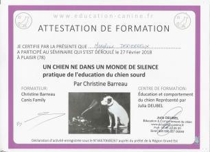 4. formation chien sourd